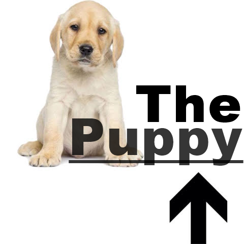 9-the-puppy